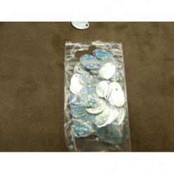 bouton fleur bleu